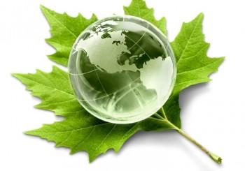 Responsables con el Medio Ambiente